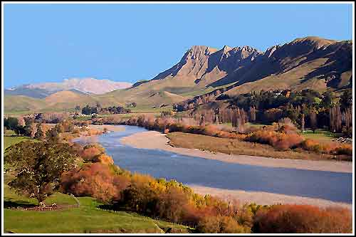 Drive through spectacular scenery with Hawkes Bay Scenic Tours