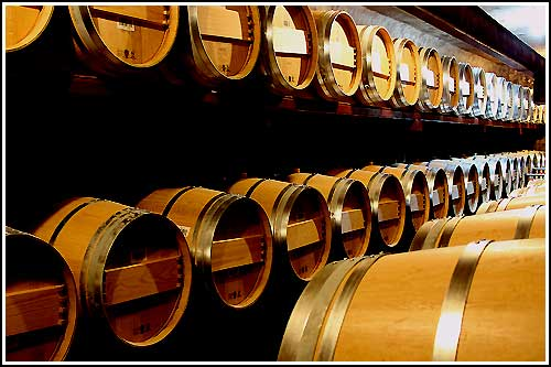 See French Wine Barrels in underground cellars with Hawkes Bay Scenic Tours