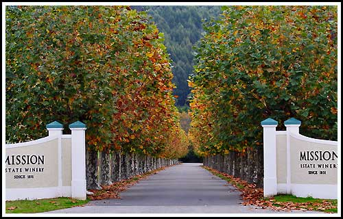 Visit the world famous Mission Estate Winery with Hawkes Bay Scenic Tours