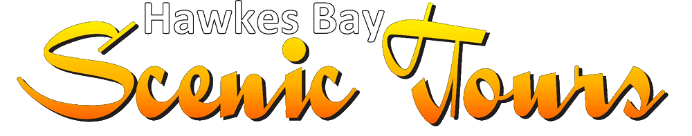 Hawkes Bay Scenic Tours transparent logo at 1000 in white